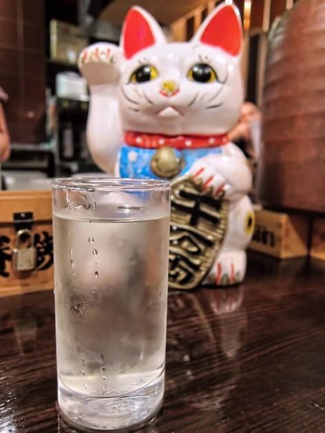Photo_1 (39)
