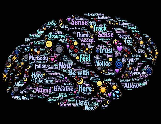 brain-998994_640